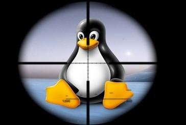 لینوکس هم در مقابل آسیب های امنیتی مصون نیست!