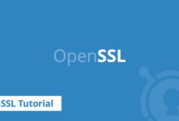 وصله دو آسیبپذیری توسط OpenSSL